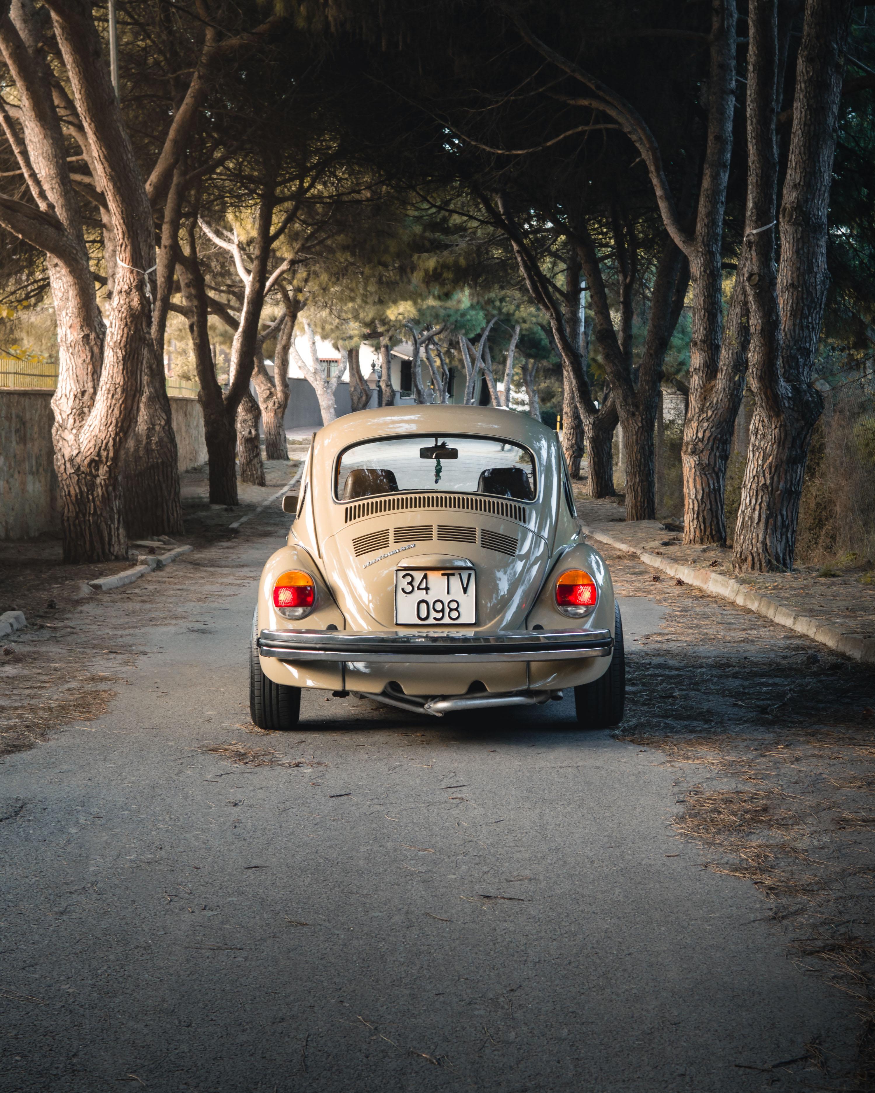 VW Beetle '74.jpg