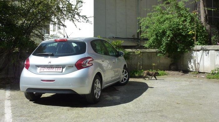 Photo of Sokak Kedisi: Peugeot 208 1.2 VTi Active